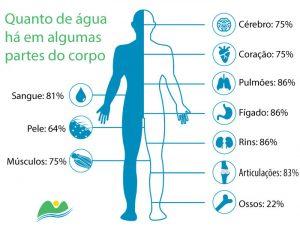 Quantidade de água no corpo humano